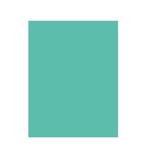 upv-amerique-centre-sud