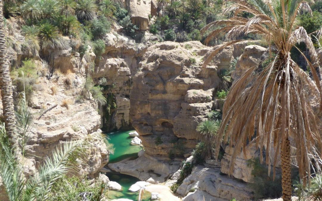 Oman – Beautés omanaises et les fjords de Musandam