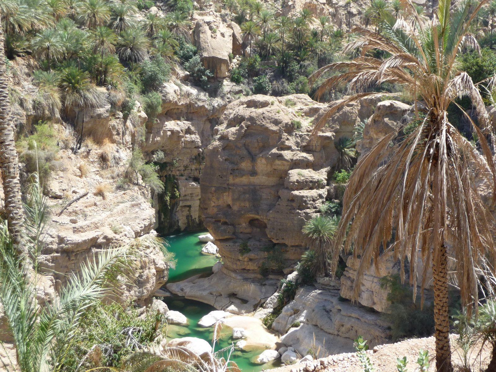 Oman-wadi-tiwi