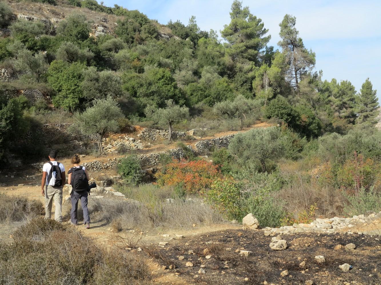 Palestine-sentier-Abraham-61