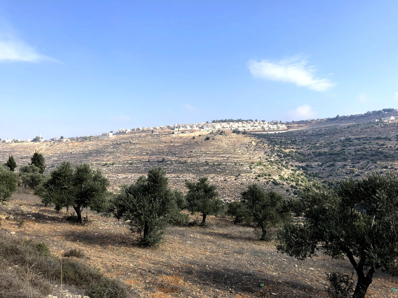 Palestine-sentier-Abraham-7