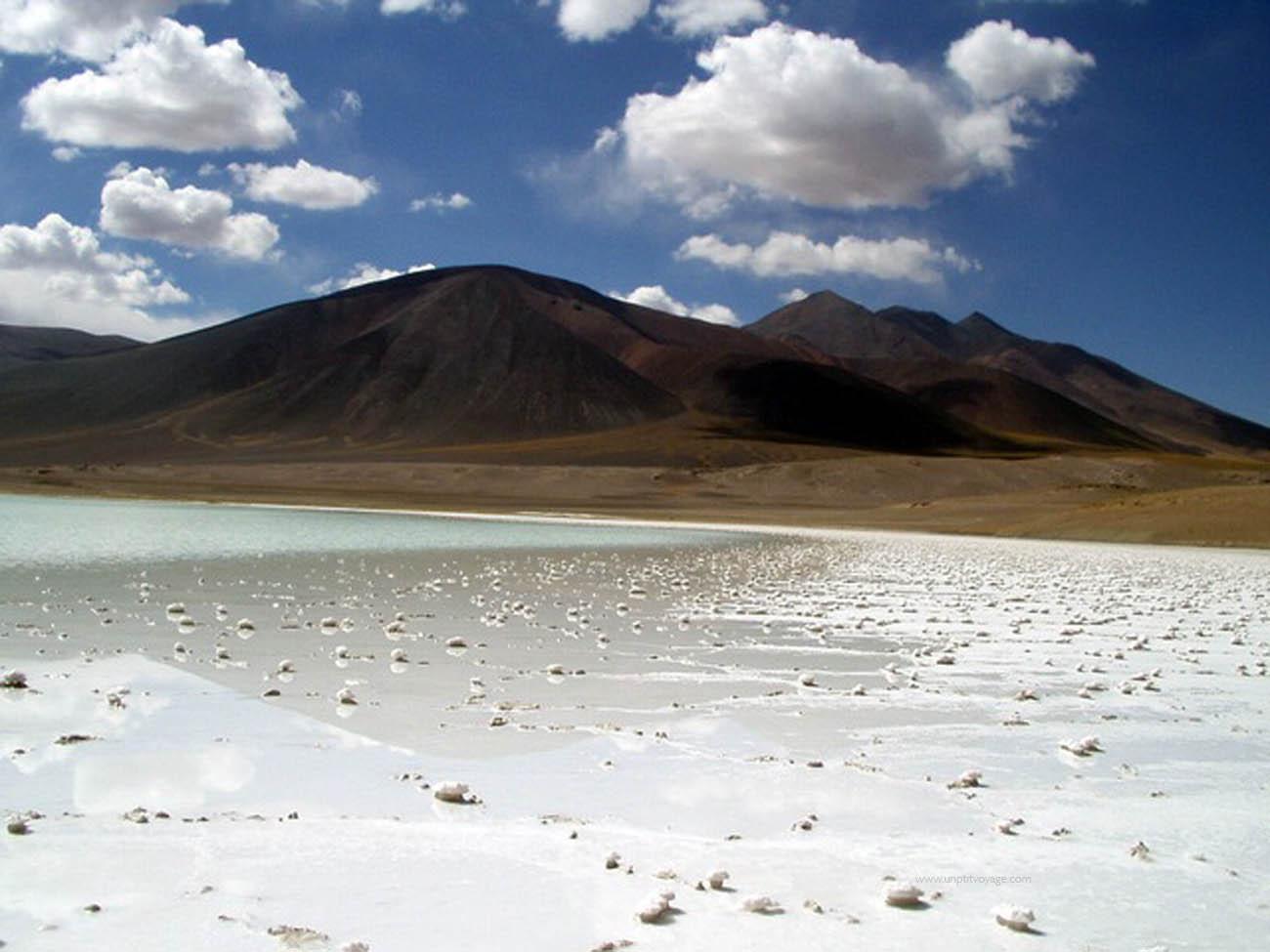 Chili-desert-atacama-lagune-salée